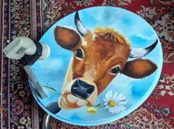 Vache parabole 1